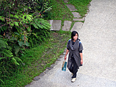 南庄桂花園:IMG_4847.JPG