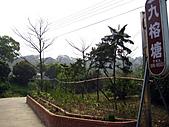 2011西湖柚花季:IMG_7102.JPG