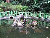 兩蔣文化園區─慈湖:IMG_6750.JPG