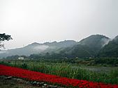 2010苗栗『遊山觀海-挑戰100』:IMG_4455.JPG