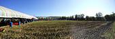 2014西湖甘藷農業之旅與白柚品嘗活動:IMG20141122123340.jpg