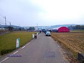 2013西湖甘藷節:IMG_20131124_123058.jpg