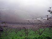 2010苗栗單車快樂遊(三) 大湖→雪見遊憩區:IMG_4176.JPG