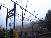 2010苗栗單車快樂遊(三) 大湖→雪見遊憩區:IMG_4096.JPG