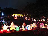 100年台灣燈會:IMG_6434.JPG