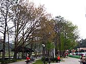 兩蔣文化園區─慈湖:IMG_6690.JPG