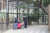 新竹市立動物園:251868827_x.jpg