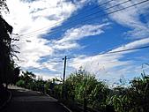 2010苗栗單車快樂遊(三) 大湖→雪見遊憩區:IMG_4231.JPG