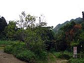 南庄護魚步道:IMG_4710.JPG