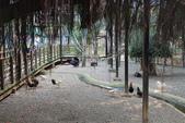 新竹市立動物園:251868880_x.jpg