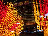 100年台灣燈會:IMG_6634.JPG