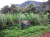 2010苗栗單車快樂遊(三) 大湖→雪見遊憩區:IMG_4178.JPG