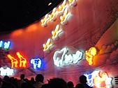 100年台灣燈會:IMG_6509.JPG
