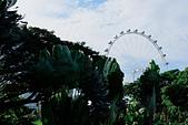 JUN 2017 新加坡遊拍:DSCF0048.jpg