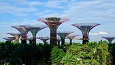 JUN 2017 新加坡遊拍:DSCF0053.jpg