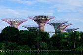 JUN 2017 新加坡遊拍:DSCF0049.jpg