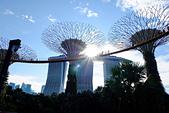 JUN 2017 新加坡遊拍:DSCF0039.jpg