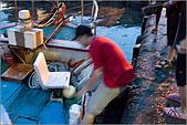 白帶魚大作戰:IMG_2394.jpg
