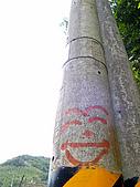 草嶺古道連走桃源谷 Round 2:IMG_0385-07.jpg