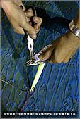 白帶魚大作戰:IMG_2412.jpg