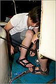 白帶魚大作戰:IMG_2481.jpg