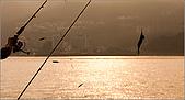 神鬼奇航海釣船:IMG_3084.jpg