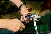 白帶魚大作戰:IMG_2505.jpg