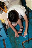 白帶魚大作戰:IMG_2559.jpg
