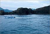 白帶魚大作戰:IMG_2618.jpg