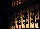 綠夜:PC180013.jpg