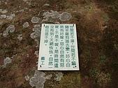 平溪孝子山:SANY0044