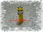 手作3.4mm糖果珠~筆套系列作品:3mm糖果珠(崔弟&金絲雀)筆套作品.JPG