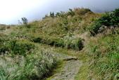每年必會山岳之七星山系步道:20131004七星山東峰單攻26