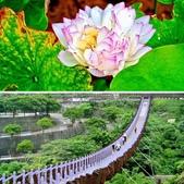 台北市---內湖區:相簿封面