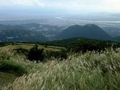 每年必會山岳之七星山系步道:20111011夢幻湖七星山東峰27