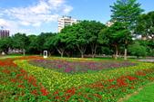 古亭河濱公園花海:2015心形花海暨順遊河濱公園3