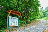 台北市---士林區:內雙溪樹木標本園2