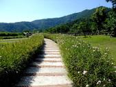 宜蘭縣---冬山鄉:仁山植物園英式花園展示區6