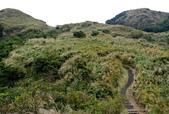 每年必會山岳之七星山系步道:20131004七星山東峰單攻11