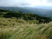 每年必會山岳之七星山系步道:20111011夢幻湖七星山東峰28