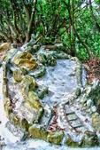 台北市---內湖區:鯉魚山步道14