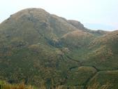 每年必會山岳之七星山系步道:20110408七星山主峰33