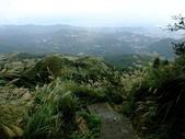 每年必會山岳之七星山系步道:20111011夢幻湖七星山東峰32
