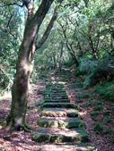 每年必會山岳之七星山系步道:20110408七星山主峰15