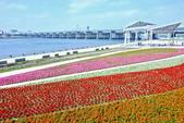 台北市---大同區:迪化休閒公園自行車道