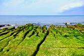 新北市---石門區:老梅綠藻礁17
