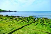 新北市---石門區:老梅綠藻礁26