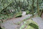每年必會山岳之七星山系步道:20131004七星山東峰單攻28