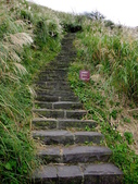 每年必會山岳之七星山系步道:20111011夢幻湖七星山東峰35