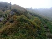 每年必會山岳之七星山系步道:20111011夢幻湖七星山東峰36